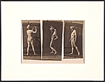Triptych of Eadweard Muybridge
