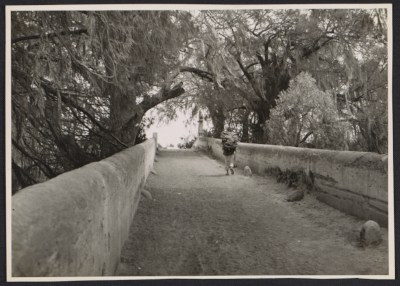 [Unidentified man carrying a bundle of sticks on a bridge]