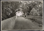 Unidentified man carrying a bundle of sticks on a bridge