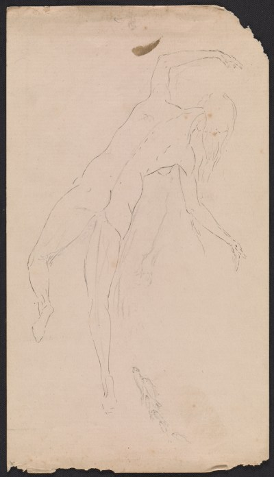 Solon Borglum drawing of a woman