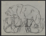 Sketches of a bear and elephants