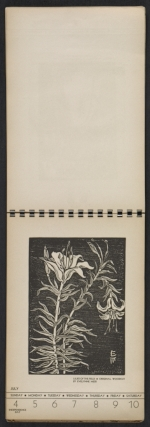 [American block print calendar 1937 pages 28]