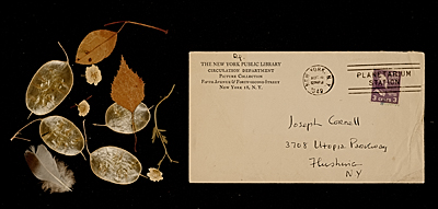 Envelope containing leaves, flowers, and a feather collected by Joseph Cornell