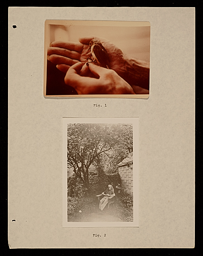 [Joseph Cornell: sun in the snow]