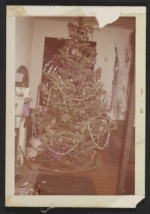 Christmas tree in Jay DeFeos Fillmore Street apartment