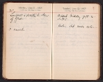 [Helen Torr Dove and Arthur Dove diary pages 88]