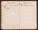 [Helen Torr Dove and Arthur Dove diary pages 99]