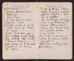[Helen Torr Dove and Arthur Dove diary pages 82]