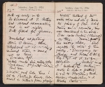 [Helen Torr Dove and Arthur Dove diary pages 89]