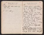 [Helen Torr Dove and Arthur Dove diary pages 100]