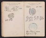 [Helen Torr Dove and Arthur Dove diary pages 137]