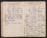 [Helen Torr Dove and Arthur Dove diary pages 155]