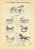 [Catalogue of weather vanes manufactured by L.W. Cushing and Sons page 11]