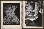 [Claire Falkenstein scrapbook of her exhibition at the Galerie Stadler pages 18]