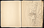 [Margaret Casey Gates sketchbook pages 13]