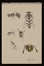Sketches of yellow jacket wasps