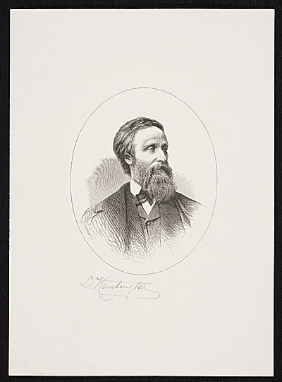 Portrait of an unidentified man