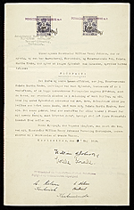 [Wedding certificate of William H. Johnson and Holcha Krake ]