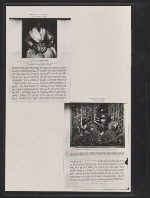 [Walt Kuhn scrapbook of press clippings documenting the Armory Show, vol. 2 pages 134]