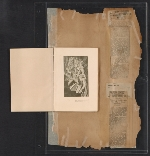 [Walt Kuhn scrapbook of press clippings documenting the Armory Show, vol. 2 pages 195]