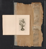 [Walt Kuhn scrapbook of press clippings documenting the Armory Show, vol. 2 pages 197]