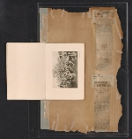 [Walt Kuhn scrapbook of press clippings documenting the Armory Show, vol. 2 pages 206]