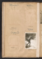 [Walt Kuhn scrapbook of artworks from the Armory Show page 5]