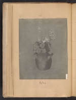 [Walt Kuhn scrapbook of artworks from the Armory Show page 21]
