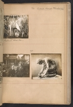 [Walt Kuhn scrapbook of artworks from the Armory Show page 40]