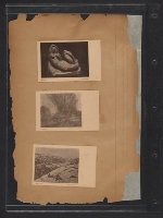 [Walt Kuhn scrapbook of press clippings documenting the Armory Show, vol. 2 page 384]