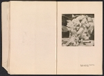 [Catalogue of the International Exhibition of Modern Art [at] the Art Institute of Chicago pages 6]