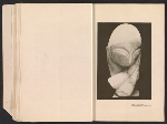 [Catalogue of the International Exhibition of Modern Art [at] the Art Institute of Chicago pages 13]