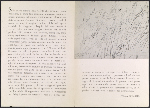 [Cy Twombly catalogue from the Galleria del Naviglio inside 1]