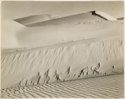 [Dunes at Oceano, California]