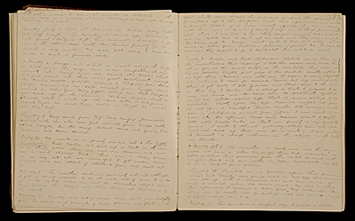[Diary Entry for July 8, 1873]