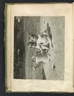 [Waldo Peirce photograph album page 7]