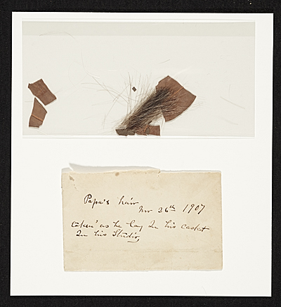 Lock of John Frederick Petos hair and a laurel leaf