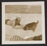 Jackson Pollock on the beach with a dog