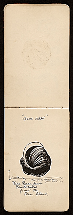 [James D. Preston autograph book 26]