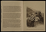 [Jacque Callot and Honore Daumier pamphlet 14]