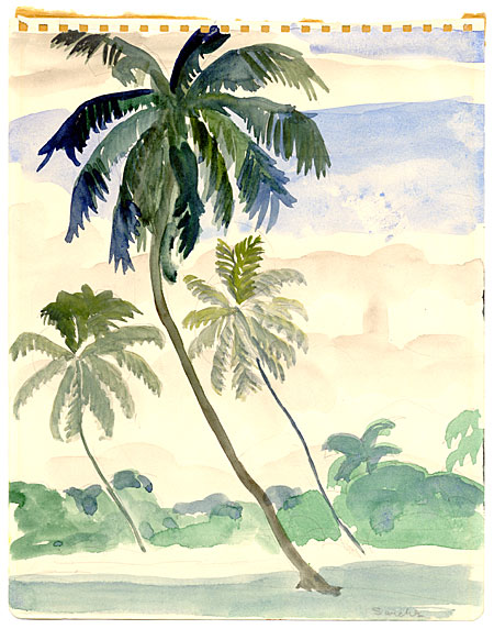 Three Leaning Palm Trees
