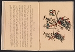 [Indian ceremonial dances in the Southwest, a block-book pages 6]
