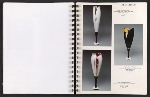 [Catalog for Masters, Chicago International New Art Forms Exposition pages 13]