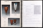 [Catalog for Masters, Chicago International New Art Forms Exposition pages 14]