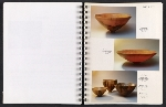 [Catalog for Masters, Chicago International New Art Forms Exposition pages 21]