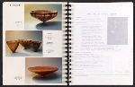 [Catalog for Masters, Chicago International New Art Forms Exposition pages 22]
