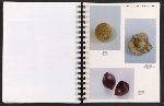 [Catalog for Masters, Chicago International New Art Forms Exposition pages 30]