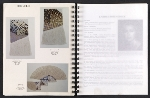 [Catalog for Masters, Chicago International New Art Forms Exposition pages 34]