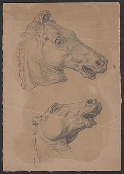 [Sketch of a horse's head from two different angles]