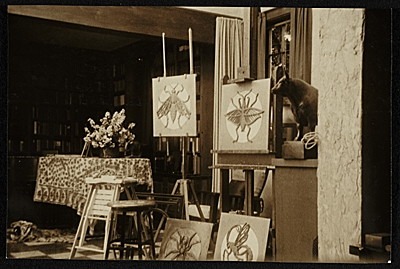 [Artworks in Katharine Lane Weems' studio]
